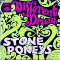 StonePoneys-DifferentDrum