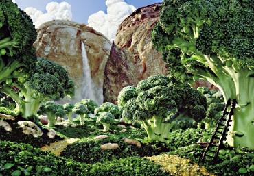 Carl Warner Foodscape