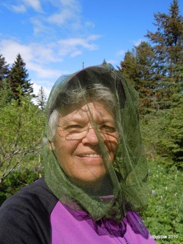 Jeanne Waite Follett