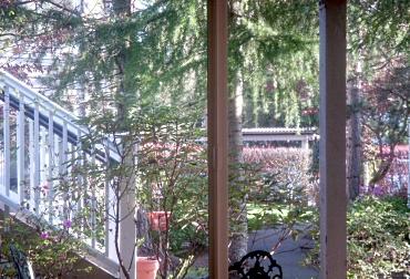 Window 2011_05_01