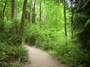 Tryon Path