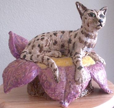 Isa Cat