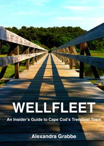 Wellfleet Book Cover