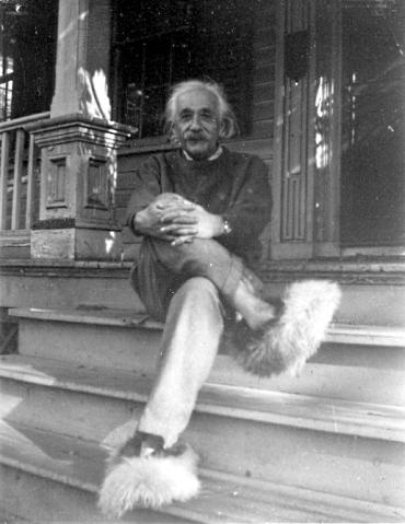 Einstein Fuzzy Slippers