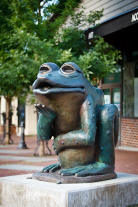 Kissing Toad by Jim DeMetro