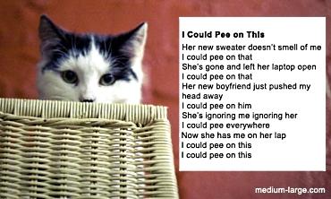 Cat-pee-poem-2