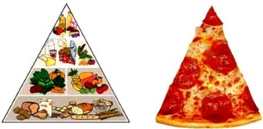 Food pyramid humorGogerty