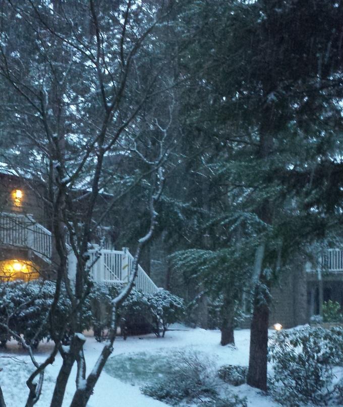 Snowing1B