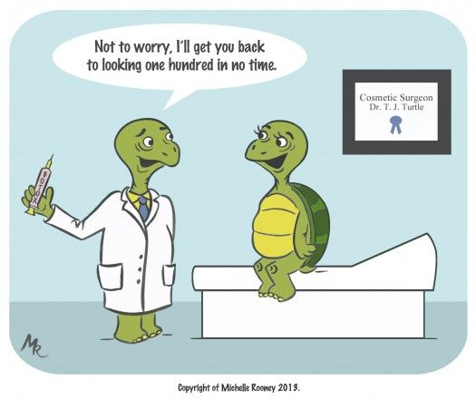 Turtleplastic surgery