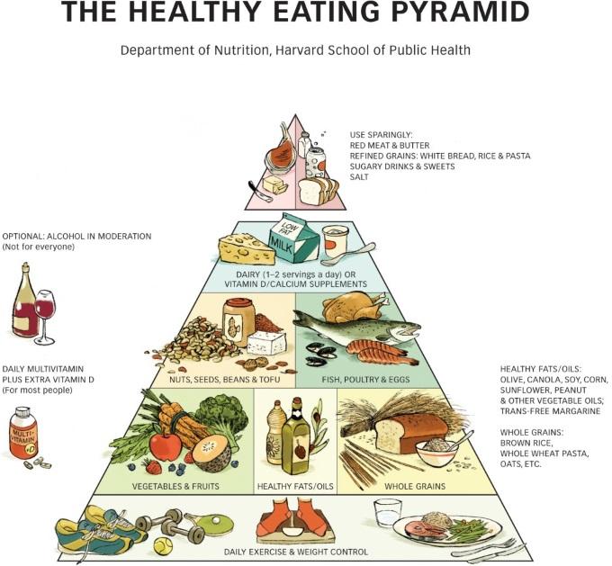 HarvardHealthyEatingPyramid1024x950