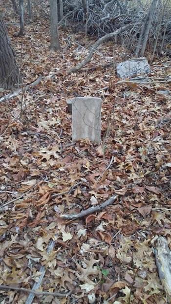 Grave StonesSylviaLi