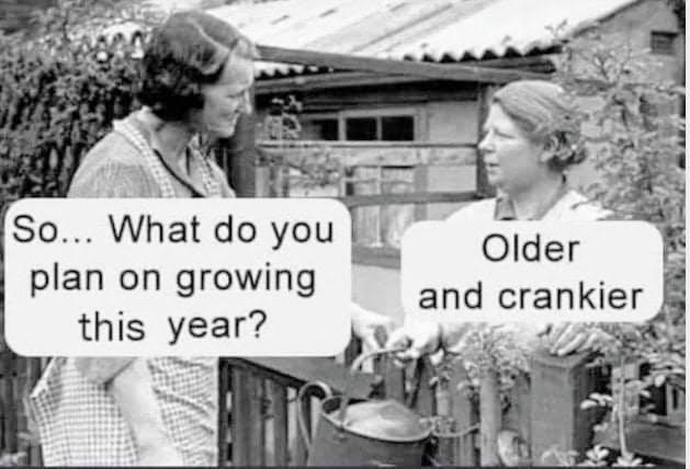 OlderCrankier