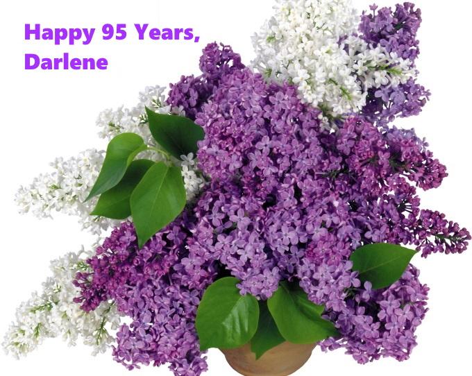 LilacsDarlene95