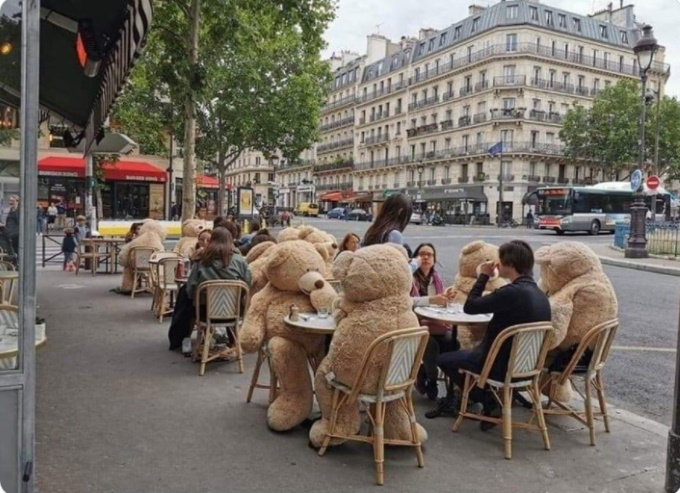 Paris Teddy Bears