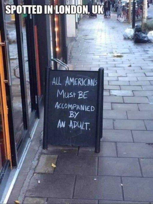 AmericansAccompaniedBAdult